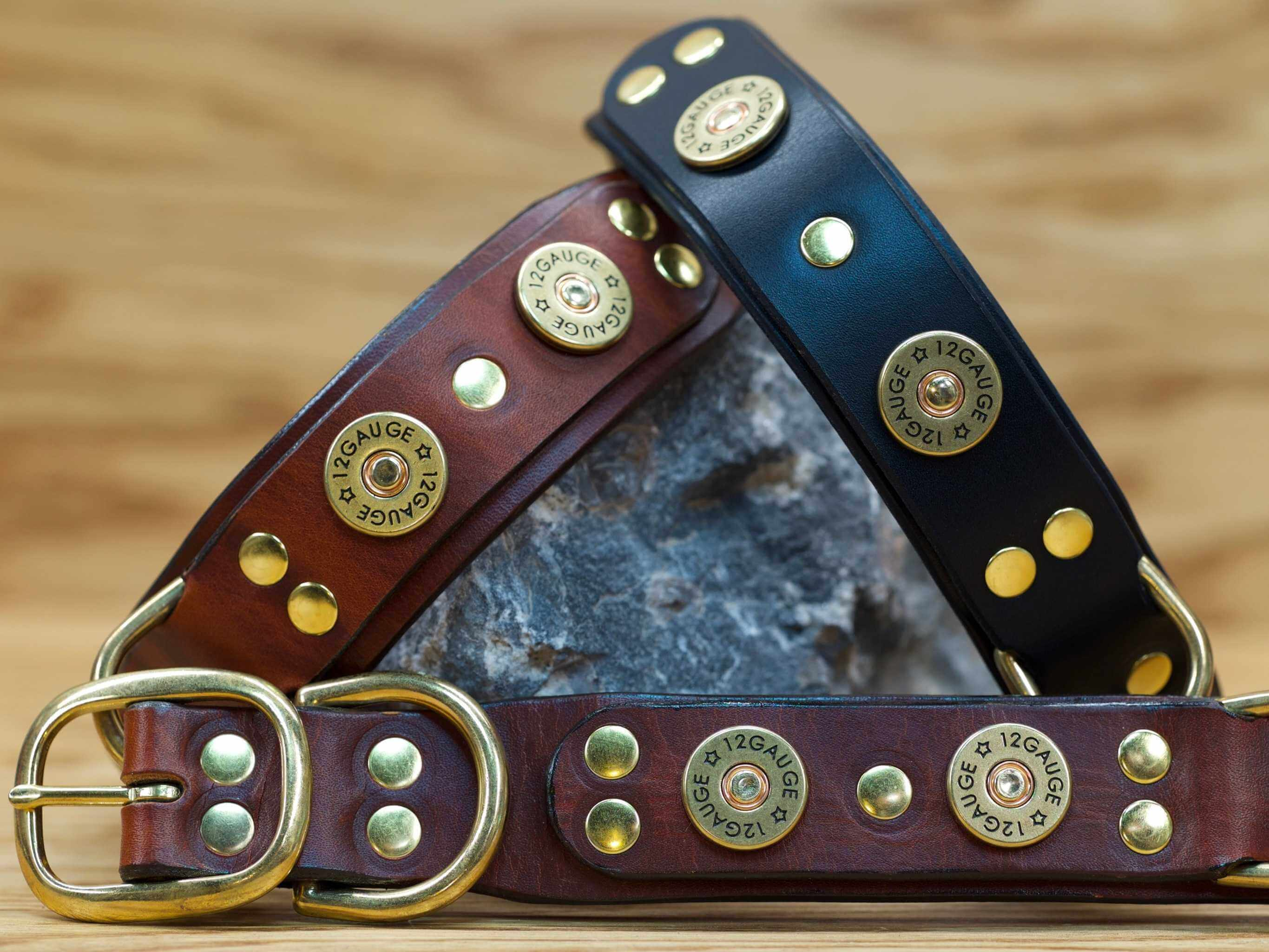 The perfect collar for the hunting dog