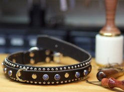 leather dog collars personalized, Dog Collars, Kobicollars