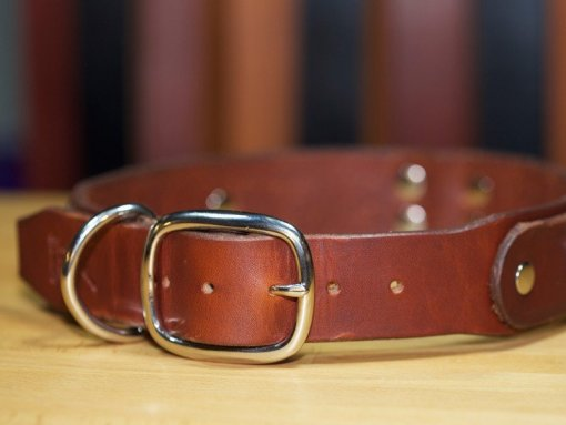 Dog Collars, Custom Leather Dog Collars, KobiCollars