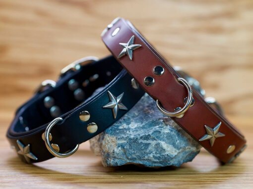 Custom leather dog collar available in black or chestnut brown