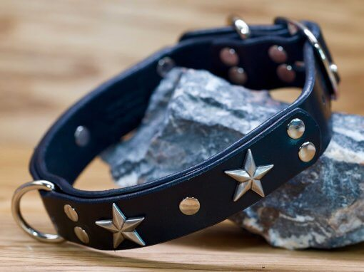 Star Gazer leather dog collar shown in black