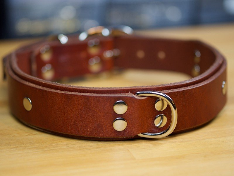Leather Dog Collars Personalized Custom Best