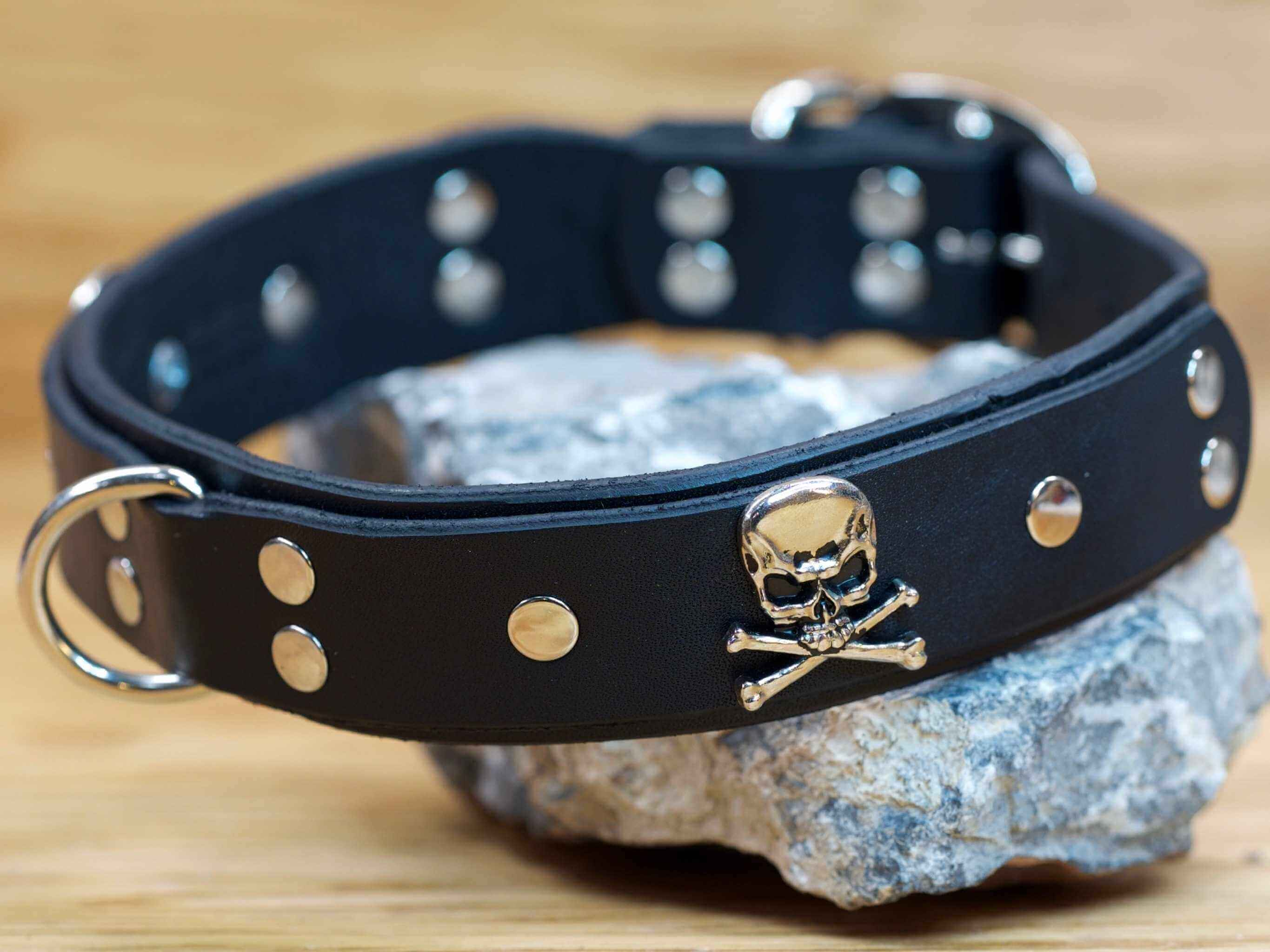 The perfect dog collar for the biker, or bad boy/girl