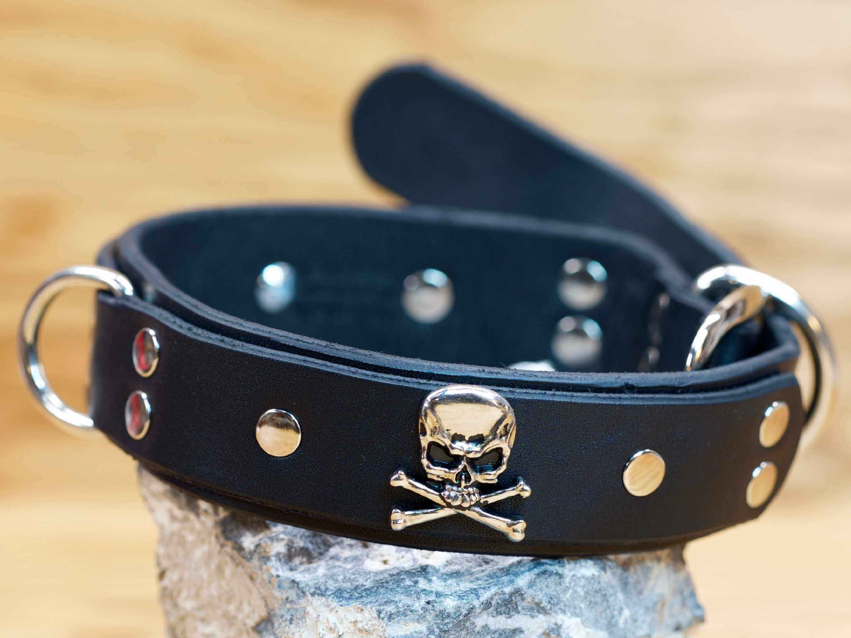 Skulls & Bones double-layer leather dog collar