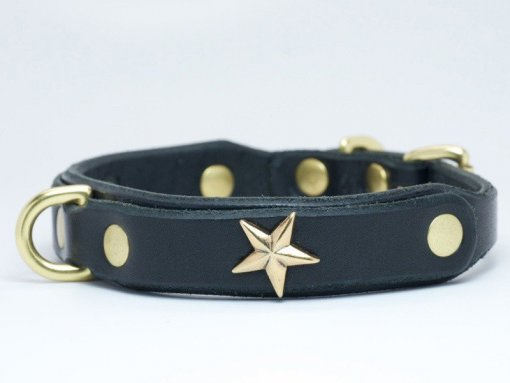 Stunning stars decorate this leather dog collar