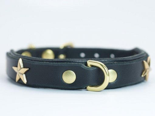 Double-layer dog collar for small breed dogs