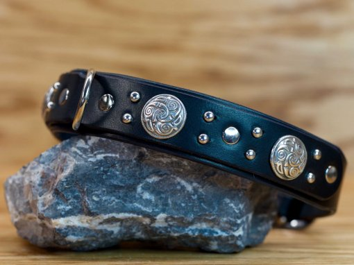 4 celtic conchos decorate this custom leather dog collar