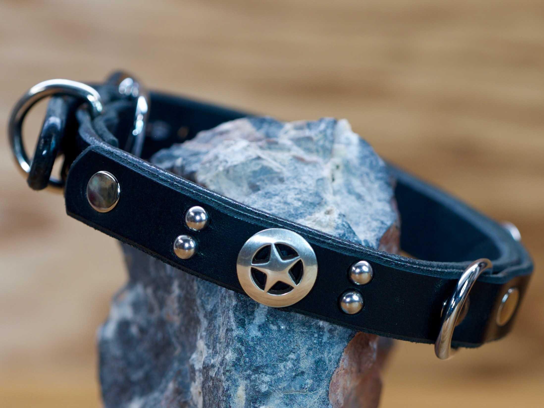 2 lone star conchos decorate this custom dog collar