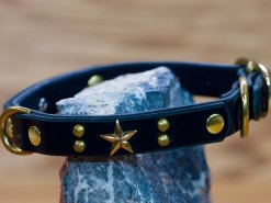 Handcrafted leather dog collar Roxy