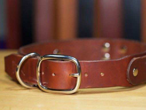 Dog Collars, Custom Leather Dog Collars, KobiCollars