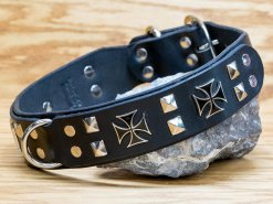 Maltese leather dog collar